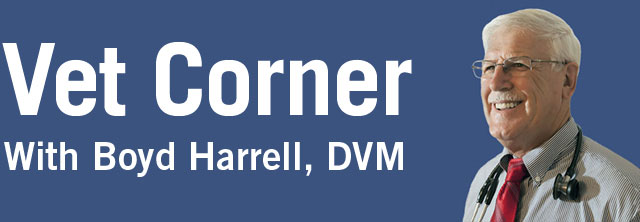 Vet Corner with Boyd Harrell, DVM